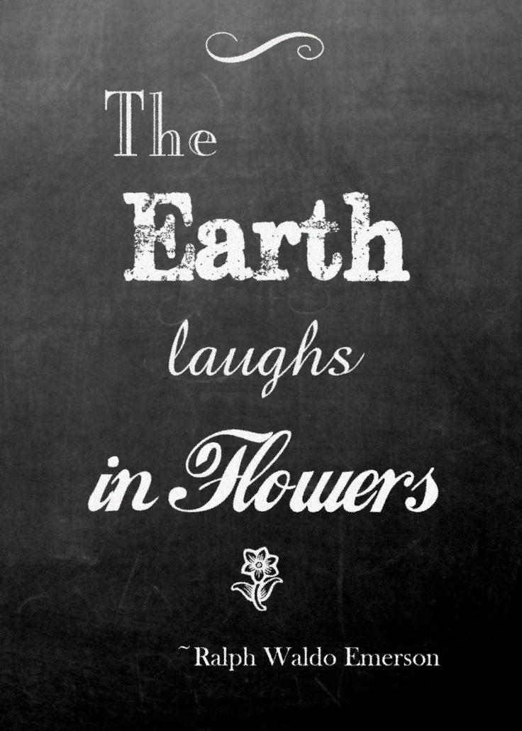 The Earth Laughs In Flowers  Ralph Waldo Emerson Free. Depression Low Self Esteem Quotes. Book Quotes By Nicholas Sparks. Inspirational Quotes Patience. Dimpled Smile Quotes. Thank You Universe Quotes. Sister Quotes Sms. Quotes About Just Keep Moving On. Famous Quotes From Abraham Lincoln