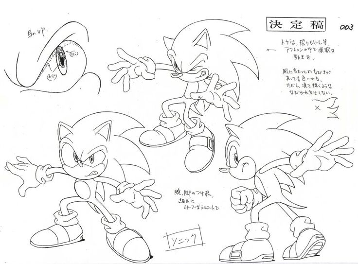 Sonic the Hedgehog (Sonic X)/Gallery - Sonic News Network, the Sonic Wiki