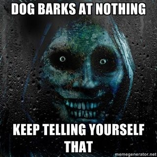 This is a freaky meme.Scary Face, Creepy, Scary Guys, Memes, Dogs, Funny Pictures, Can'T Sleep, Funny Stuff, Real Scary