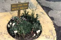 World's Smallest Park!  in Portland, OR.   Aww .... (Things to Do With Kids in Portland Oregon)