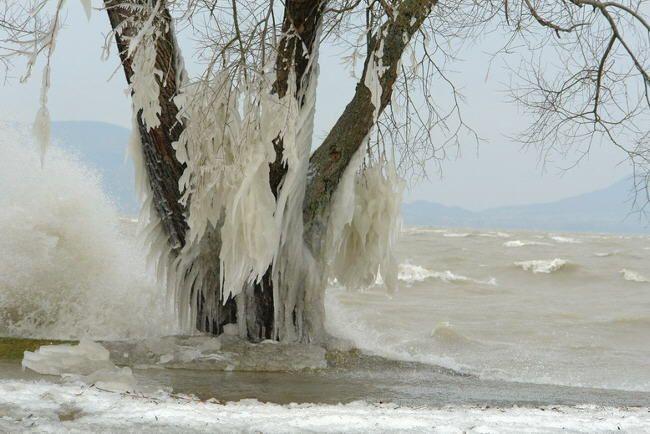 the #lake #Balaton during wintertime