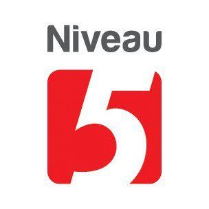 Niveau 5 - Graphisme Lévis - Logotype   Flickr - Photo Sharing!