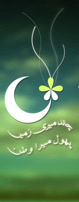 14th August Pakistan Independence Day Celebration 2913