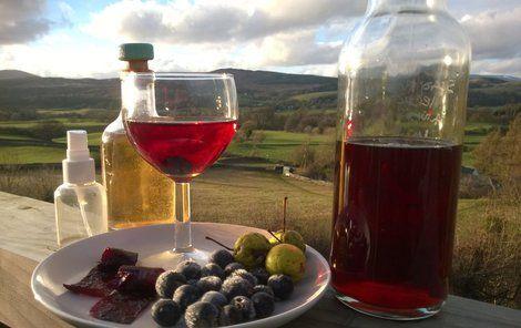Trnka plná vitamínů: Připravte si čaj, víno nebo likér!