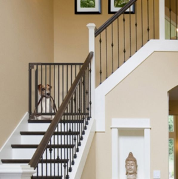 Pet Gates For Stairs dog gates amp pet gates for stairs