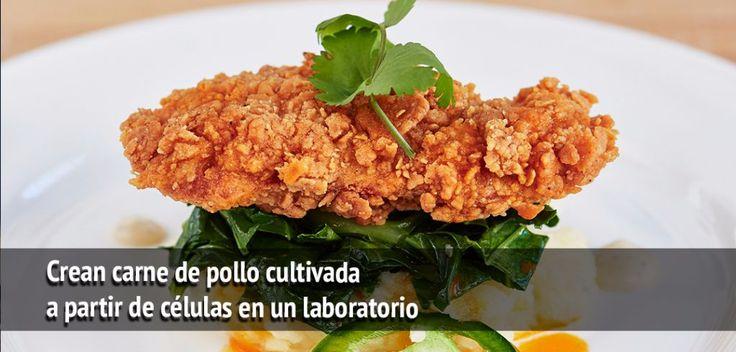 """Una empresa de tecnología de alimentos en San Francisco, EUA, ha desarrollado en un laboratorio la primera carne de pollo y de pato en el mundo a partir de células animales. """"Es emocionante presentar el primer pollo y pato que no requieren de la cría de animales"""" dijo el CEO de Memphis Meats en unRead More"""