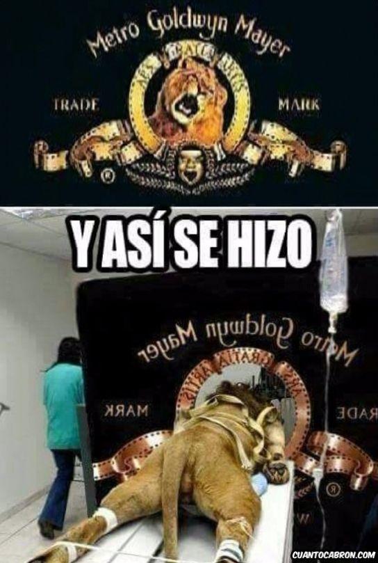 Memes de humor: El making off de la intro del león de la Metro →…