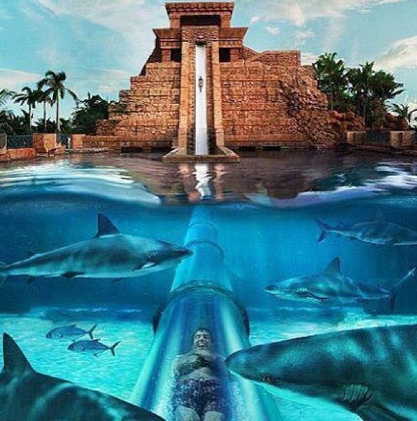 25 best Underwater hotel images on Pinterest   Underwater ...