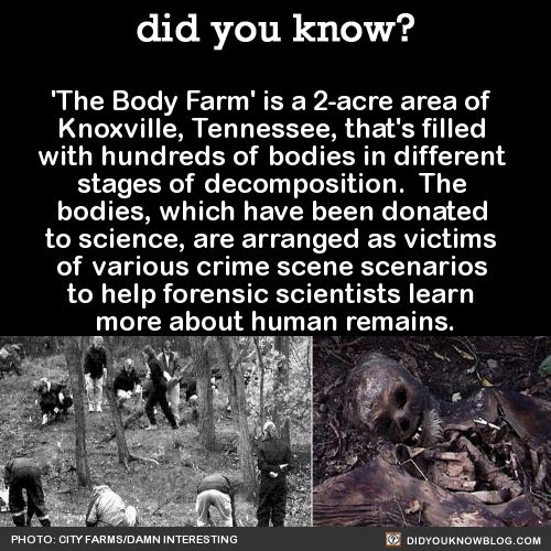 'The Body Farm' is a 2-acre area of Knoxville, Tennessee, that's filled with hundreds of bodies in different stages of decomposition. The bodies, which have been donated to science, are arranged as victims of various crime scene scenarios to help...