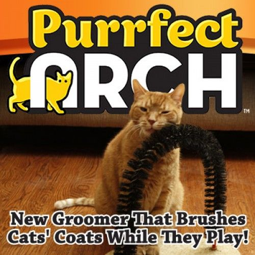 purrfect arch cat self groomer and massage all in one