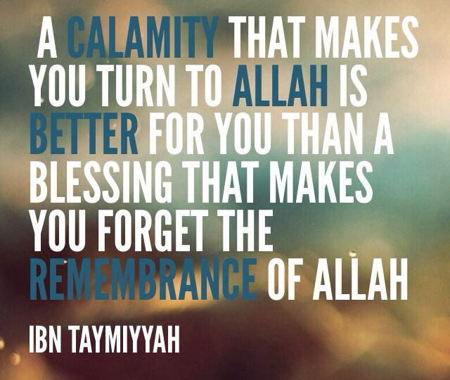 Islamic Quote Ibn Taymiyyah