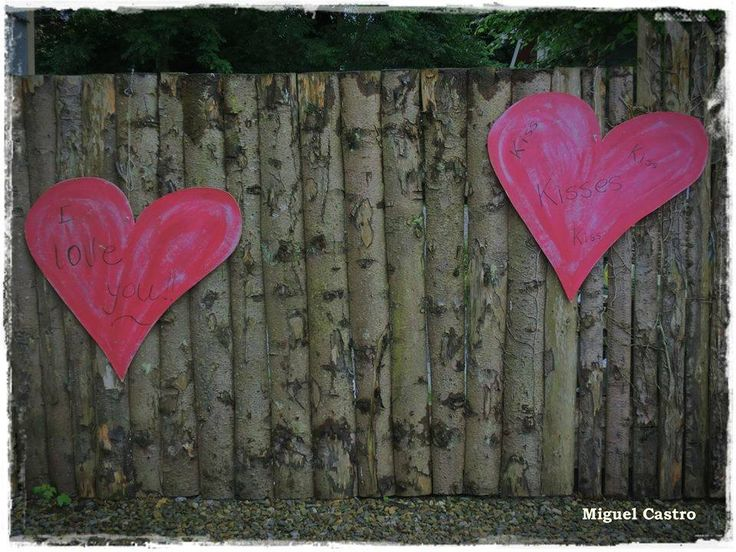 when love is in the air....for two to share in the beauty of our eco house