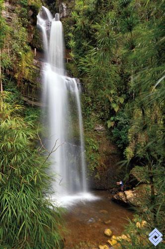 .::: Banco de Occidente :::. La cascada El Chiflón en el departamento de Cundinamarca, tiene 70 metros de altura. En verano es tan sólo un pequeño cordón de agua.
