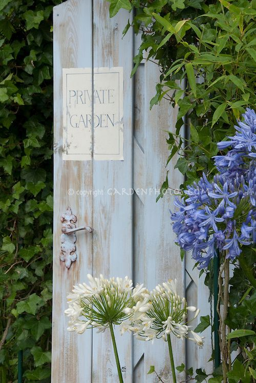 Color (light periwinkle blue) inspiration: (via Blue garden door with private garden sign | Plant & Flower Stock Photography: GardenPhotos.com)