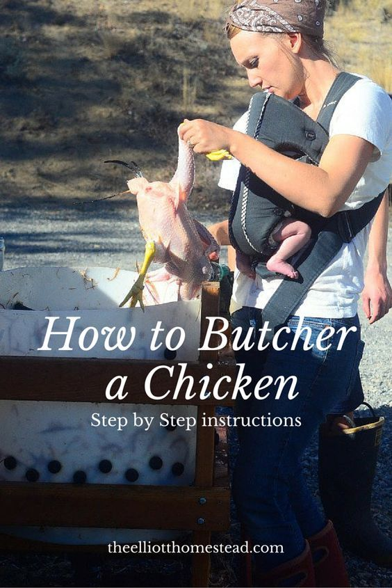 How to Butcher a Chicken -step by step instructions- www.theelliotthomestead.com
