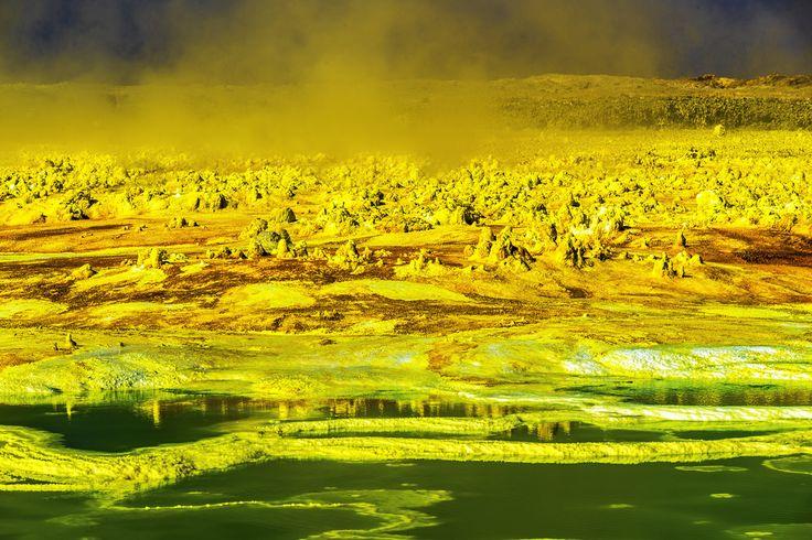 DSC_3351 Danakil Desert - David Drori