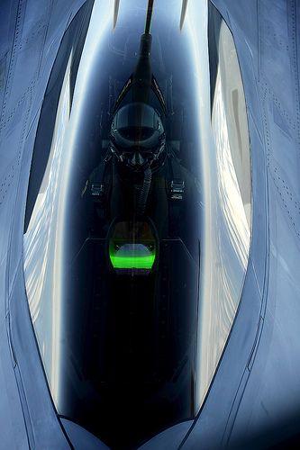 F-22 Raptor 009 | Flickr