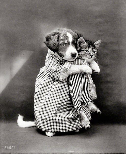 Blended Family: 1914
