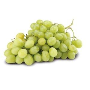 Vinič - Plody viniča - Hrozno