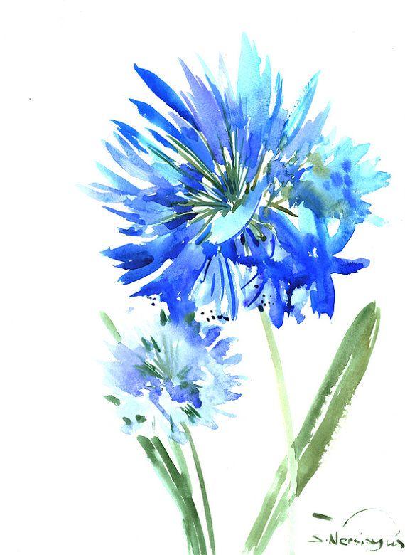 Flores de Agapanthus azul, acuarela original pintura, 16 X 12 en arte de la pared azul suave cielo azul