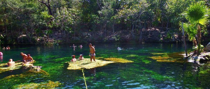 3624 best images about cenotes mexico on pinterest for El jardin del eden