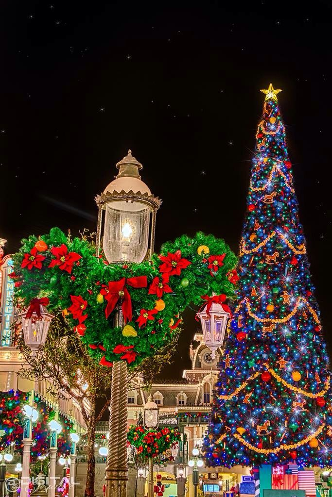 jeffrey nesseth bruthness3 on pinterest - When Does Disney World Decorate For Christmas 2017