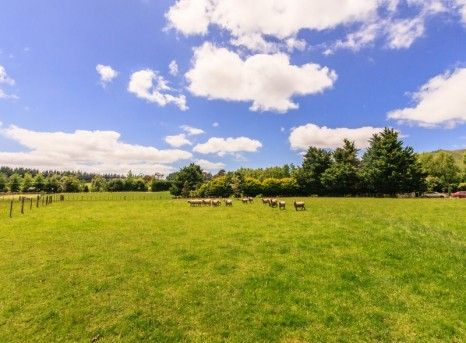 Tall Poppy Real Estate - 44 Williams Road, Tokomaru- Manawatu. For sale now! Click the photo and find out how you could own this slice of paradise