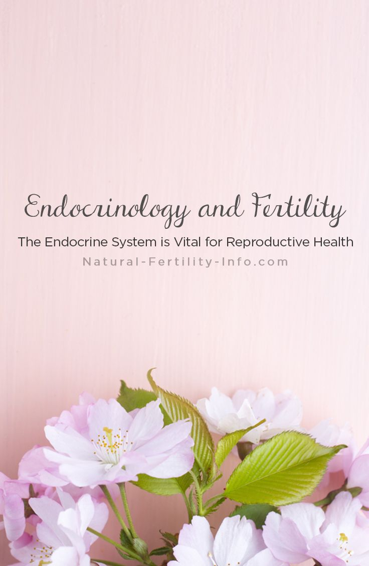 maintaining your fertile health refadoc Fertility centers of illinois  7 ways to boost your fertility in time for women's  health week  maintain a healthy diet and weight next time you're hungry,.
