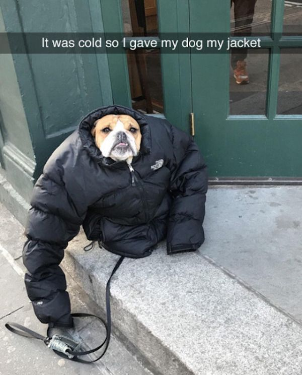 50 Funny Pictures For Today (#82)
