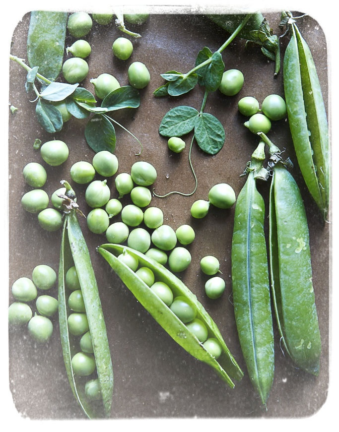 #2.  1 cup cooked snow peas 8.6g protein - http://nutritiondata.self.com/facts/vegetables-and-vegetable-products/2521/2