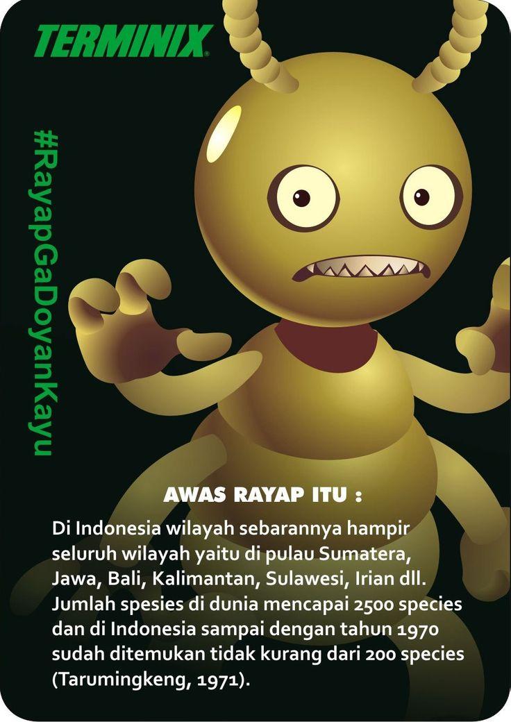 200 Species Rayap
