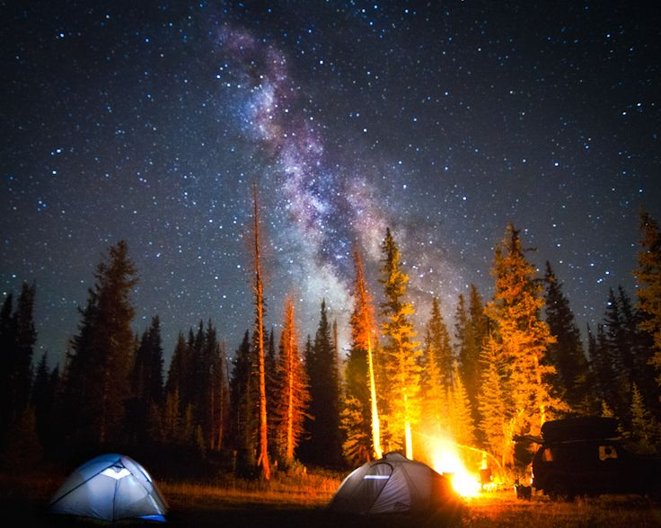 Camping Outside A Beautiful Forest Under Night Sky Full Of Stars For ONE Only
