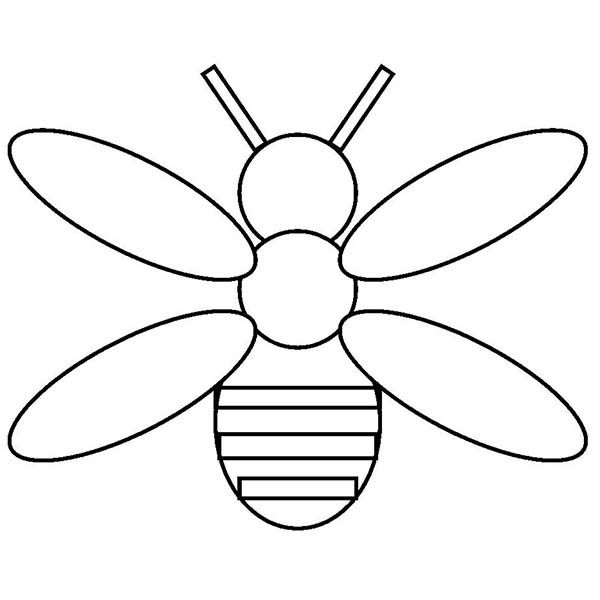 Firefly Coloring Page Bee Template Bug Coloring Pages Coloring Pages