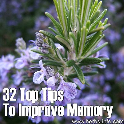 32 Top Tips To Improve Memory