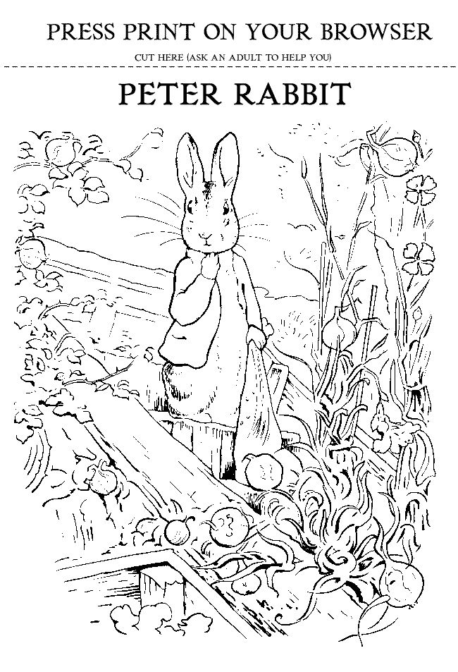 Beatrix Potter 39 s Peter Rabbit Printout