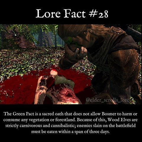 I love wood elves.    #skyrim #dragon #dragons #fact #gaming #videogames #gamer #elves #fantasy #elderscrolls #bethesda #theelderscrolls #lorefact #oblivion #morrowind #es #eso #elderscrollsonline #theelderscrollsv #dwemer #dwarves #giants #khajiit #redguards #redguard #woodelves #elderscrollslorepage