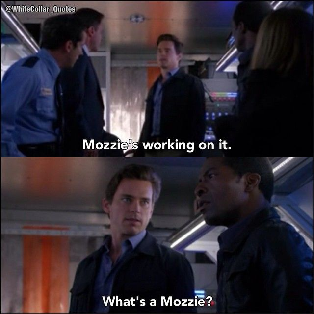 """What's a Mozzie?"" Kellers handler. Picture credit White collar quotes"