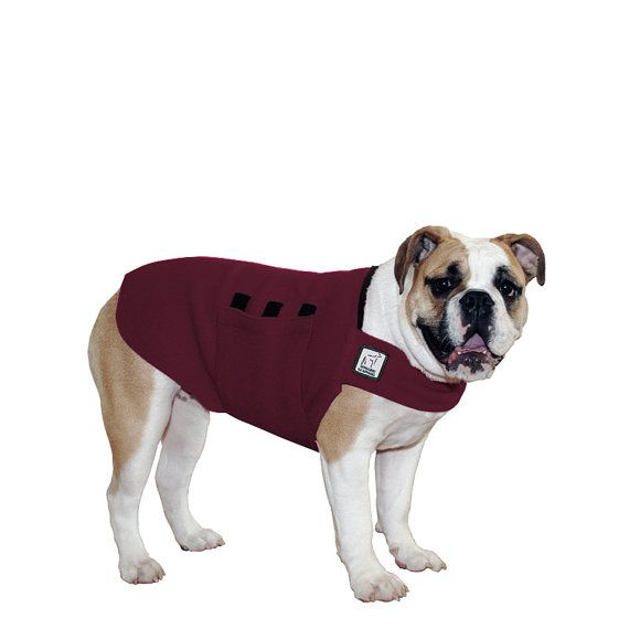 ENGLISH BULLDOG Tummy Warmer Fleece Dog Coat by VoyagersK9Apparel