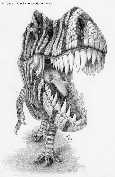 This is a good image for the gums, teeth, and tongue of a t-rex. I will use these areas of interest for my final.