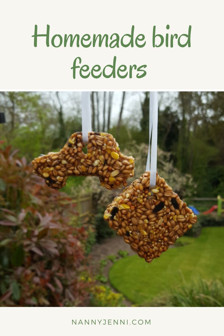 Come and take a look at these adorable homemade bird feeders. This is a perfect children's activity and easy to do!