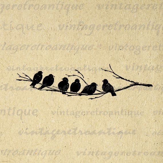 Printable Image Birds on Tree Branch Graphic Bird Artwork Digital Download Antique Clip Art. Vintage digital image from retro artwork for transfers, printing, papercrafts, and many other uses. Great for etsy products. This graphic is large and high quality, size 8½ x 11 inches. Transparent background version included with all images.