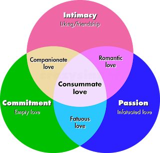 Robert Sternberg's triangle theory of love