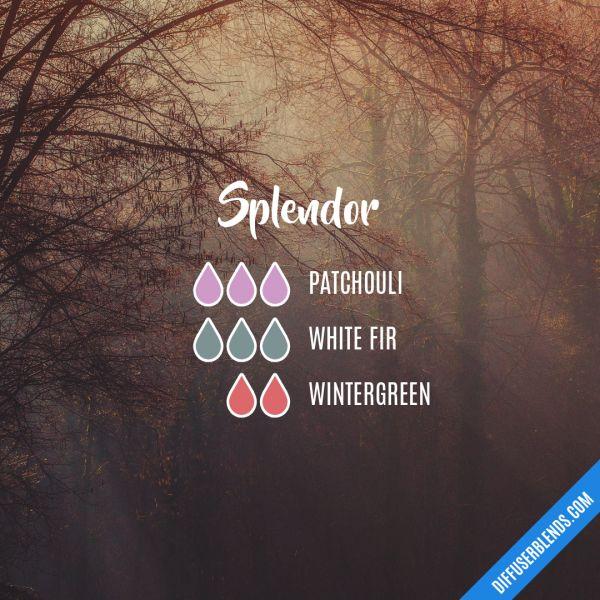 Splendor - Essential Oil Diffuser Blend
