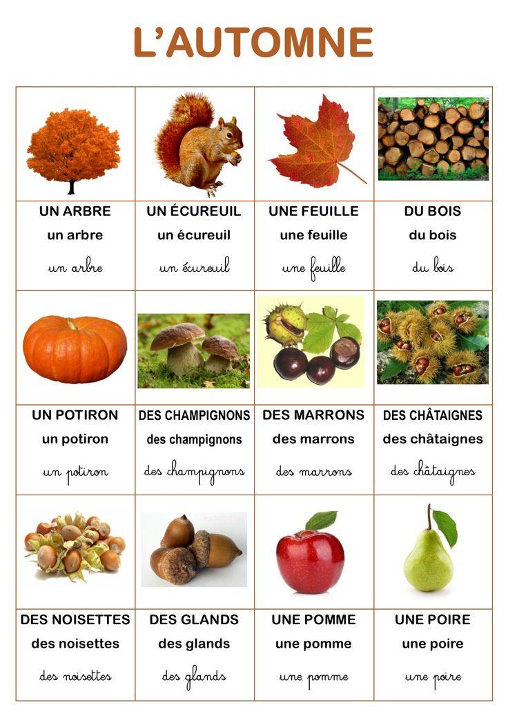 Vocabulaire automne