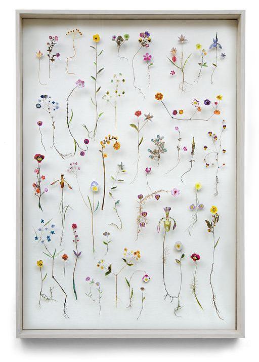 Anne ten Donkelaar Flower construction #56 (70 cm x 100cm x 6.5cm)