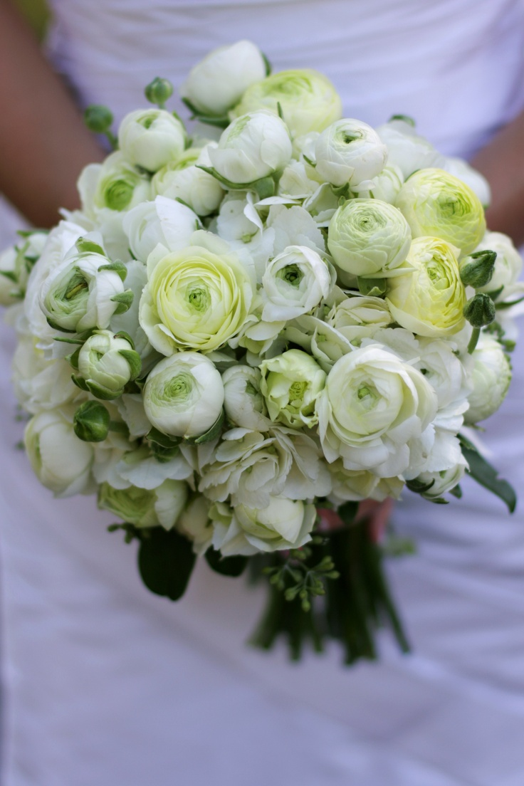 73 best english garden wedding bouquets images on pinterest a beautiful design of white and green ranunculus softly framed by hydrangea english gardensranunculuswedding bouquetswedding flowersgarden dhlflorist Choice Image