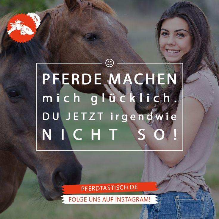 Mehr Fun & Fakten auf > pferdtastisch.de   #pferdtastisch #reiten #pferd #voltigieren #dressurreiten #springreiten #vielseitigkeitsreiten #geländereiten #jagdreiten #distanzreiten #orientierungsreiten #westernreiten #freizeitreiten #wanderreiten #formationsreiten #quadrillereiten #kunstreiten #pferderennen #reitsport #pferdeglück