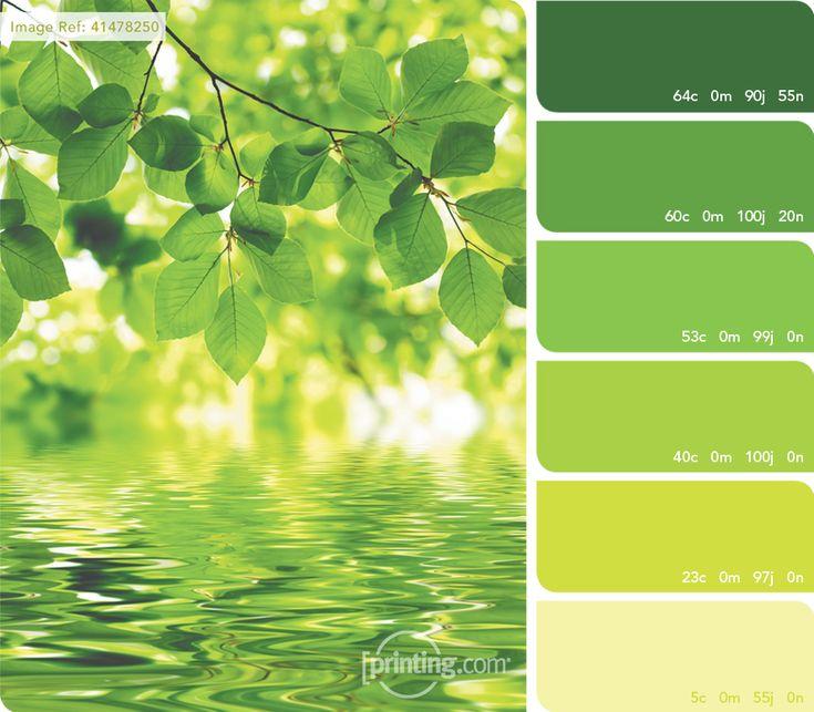 Connu Les 53 meilleures images du tableau // Palette de Verts // sur  JU24