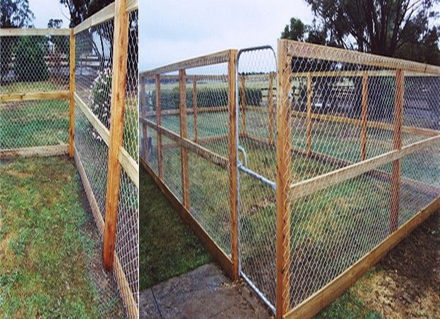 Simple dog fence ideas with cheap fencing ideas for dogs for Cheap tall privacy fence