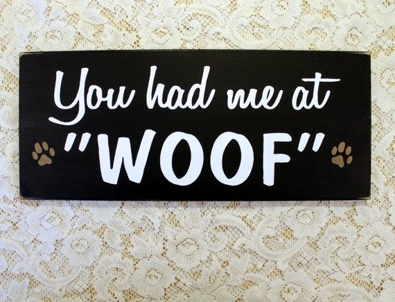 Hey, I found this really awesome Etsy listing at https://www.etsy.com/listing/159207710/you-had-me-at-woof-painted-wood-dog-sign